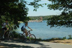 Zdjęcie wiwiórczej ścieżki widok na jezioro